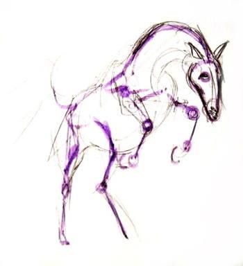 Нарисуем схему лошади