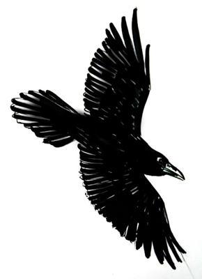 Рисунок -раскраска Ворон