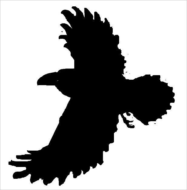 Рисунок -Ворон летит 1313