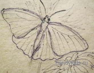 Как нарисовать сидящую бабочку