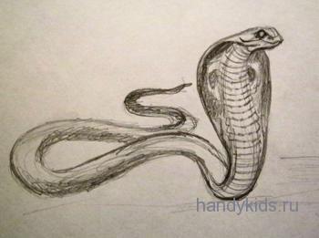 Кобра-рисунок карандашом