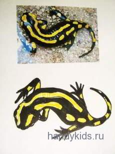 Как нарисовать саламандру