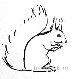 Рисунок Белка