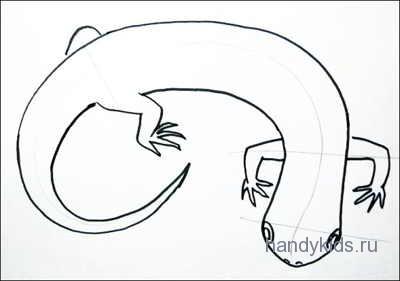 Раскраска Саламандра