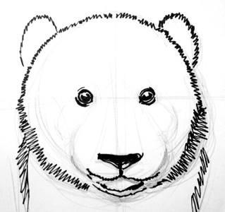 Голова панды рисунок