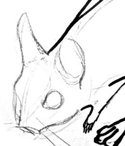 Рисунок голова тушканчика в профиль