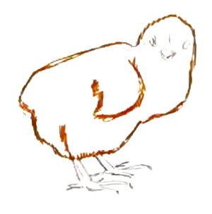 Нарисуем цыплёнка