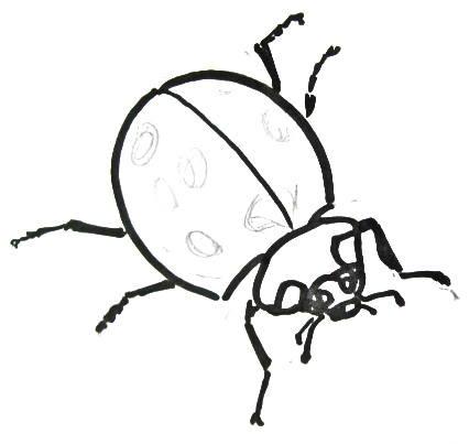 Нарисуем жука божью коровку