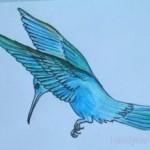 Раскраска с дорисовыванием  Колибри