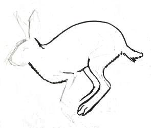 Рисуем скачущего зайца