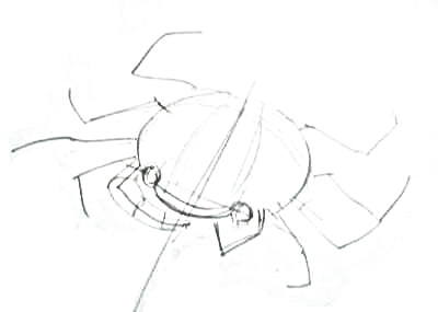 Нарисуем краба