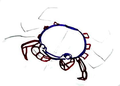 Уроки рисования краба -17