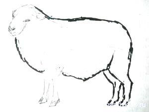 Рисуем барана
