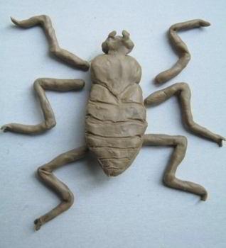 Лепим лапы жука