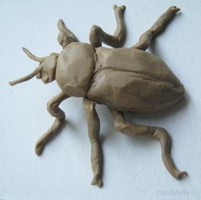 Лепка жук