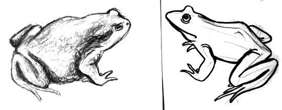 Рисунок -жаба и лягушка