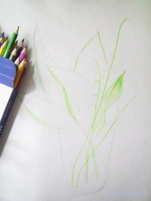 Рисуем ландыш карандашами