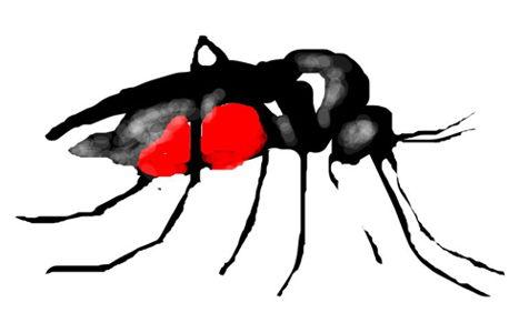 Комар рисунок 17