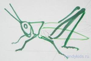 Как рисовать кузнечика