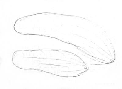 Рисуем огурцы