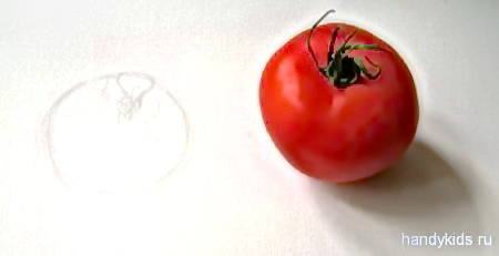 Рисуем помидор с натуры