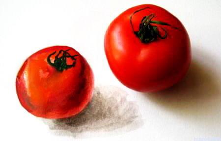Помидор и рисунок помидор