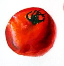 Рисунок помидор(томат)