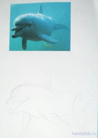 Рисуем дельфина