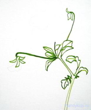 Рисуем цветок