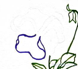Рисуем цветок Анютины глазки
