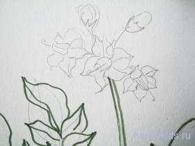 Нарисуем цветы картофеля