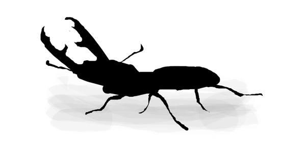 Рисунок жук-олень