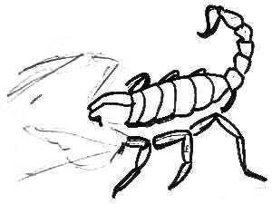 Рисуем скорпиона поэтапно