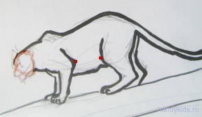 Как нарисовать пантеру поэтапно