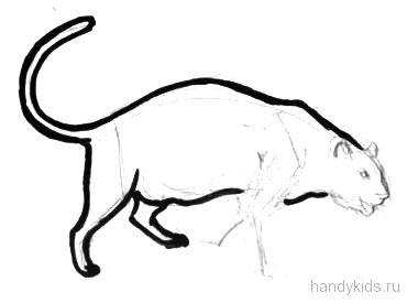 Нарисуем пантеру карандашом