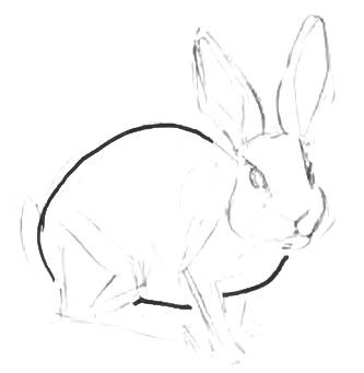 Урок рисования кролика