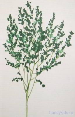 Trees 013