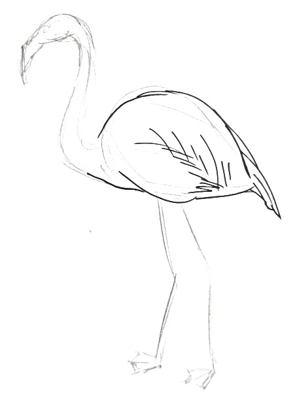 Рисуем фламинго