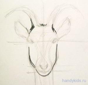 Рисуем голову козы