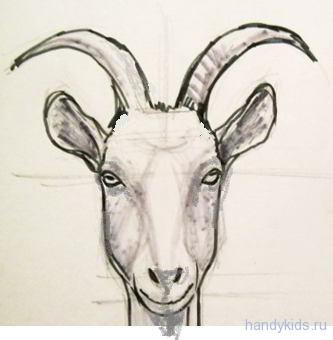 goat 0177
