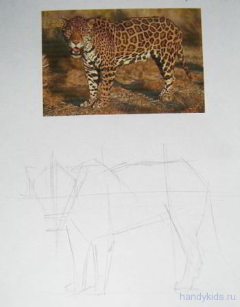 Рисуем ягуара карандашом