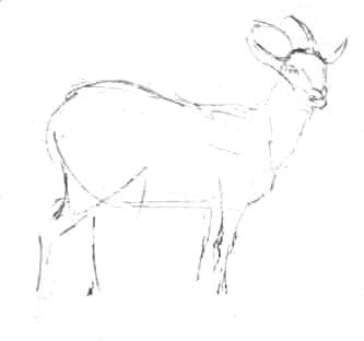 Нарисуем козу