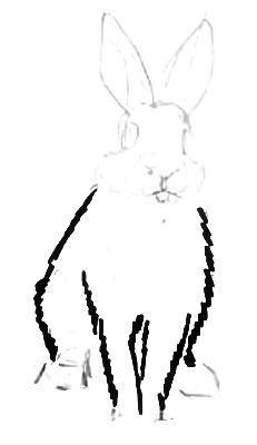 Поэтапный рисунок кролика
