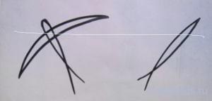 Рисунок ласточки -схема