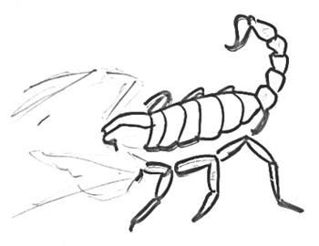 Урок рисования скорпиона