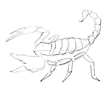 Скорпион рисунок карандашом