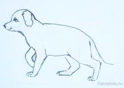 Рисунок щенок овчарки