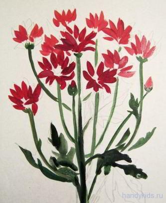 Как нарисовать хризантемы
