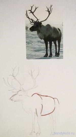 Рисуем оленя