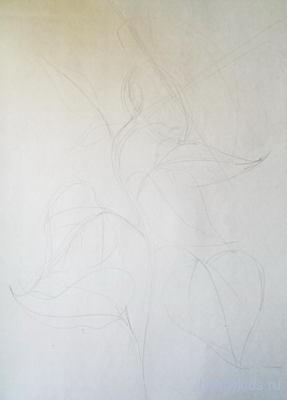 как рисовать подсолнух карандашом